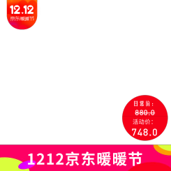 京东双12数码家电主图图标i海报