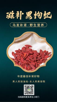 养生保健滋补中国风黑枸杞产品展示