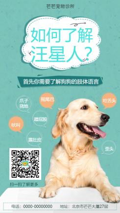 宠物狗狗可爱知识科普海报