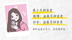 简约日系清新作者介绍作者名片