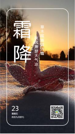 霜降冰霜红叶秋天日签海报