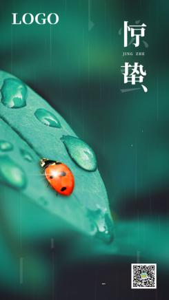 绿色简约写实风格惊蛰节气宣传手机海报