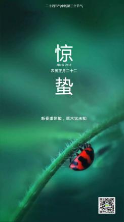 绿色二十四节气惊蛰节气宣传海报