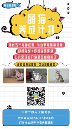 萌猫宠物推广手机海报