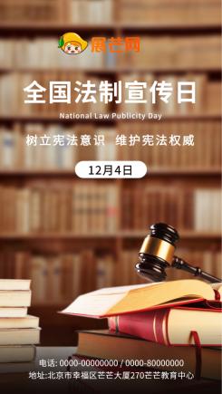 全国法制宣传日法律教育宣传海报